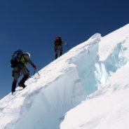 Himalayan Tur